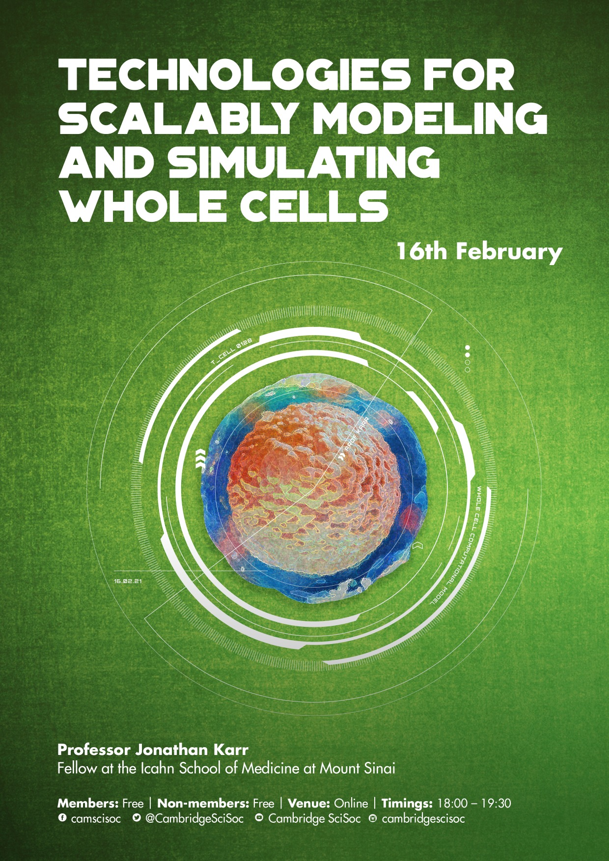 Whole-cell modelling